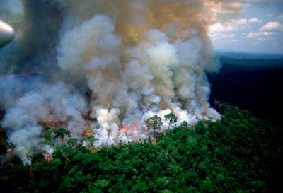 Οι βροχές δεν θα σβήσουν τις φωτιές στον Αμαζόνιο σύντομα