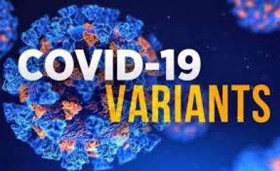 Covid: Τρίτη δόση ετοιμάζει η Pfizer - Γαλλία: Διάγγελμα Macron στις 12/7 για υποχρεωτικό εμβολιασμό