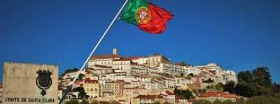 Πορτογαλία: Οργή από τη σφαγή εκατοντάδων ελαφιών και αγριογούρουνων σε «κυνηγετική εξόρμηση»