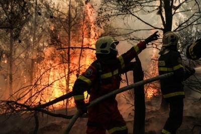 Μάχη με τις φλόγες για 8η ημέρα στη Βόρεια Εύβοια - Μεγάλες αναζωπυρώσεις στα μέτωπα Ηλείας - Αρκαδίας