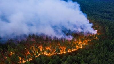 Για πρώτη φορά στην ιστορία οι καπνοί από τις φωτιές της Σιβηρίας έφτασαν στον Βόρειο Πόλο!
