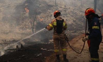 Βιβλική καταστροφή από τις πυρκαγιές στην Αττική – Βελτιωμένη η εικόνα, σε επιφυλακή οι πυροσβεστικές δυνάμεις για αναζωπυρώσεις