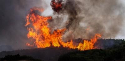 Μεγάλη πυρκαγιά σε δασική έκταση στον Άγιο Στέφανο Κέρκυρας