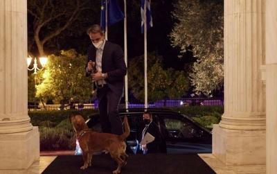 Ο πρωθυπουργός υιοθέτησε αδέσποτο σκύλο - Ποιος είναι ο νέος ένοικος του Μαξίμου