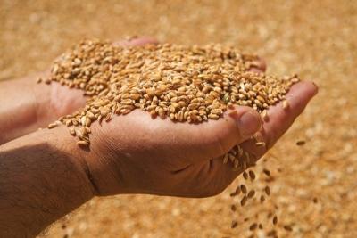 Άσχημα μαντάτα για τον πλανήτη από το νέο ρεκόρ στις τιμές των τροφίμων