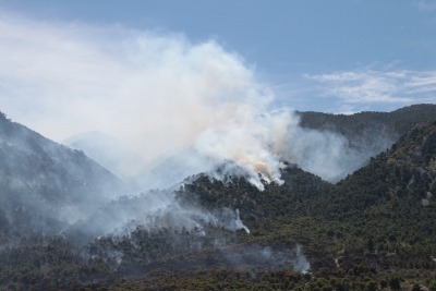 Ανεξέλεγκτη φωτιά στην Κορινθία - Αποπνικτική η ατμόσφαιρα στην Αθήνα - Χαρδαλιάς: Από καύση υλικών σε ελαιώνα η πυρκαγιά
