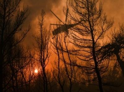 Σε ύφεση και χωρίς ενεργό μέτωπο οι φωτιές σε Άραξο και Καλάβρυτα