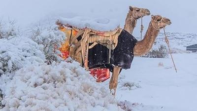 Χιόνισε ακόμα και στην έρημο Σαχάρα