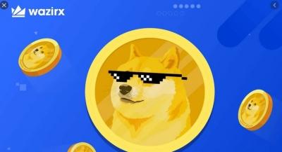 Πώς η αύξηση ζήτησης του Dogecoin οδήγησε σε κατάρρευση του συστήματος στο μεγαλύτερο ινδικό ανταλλακτήριο