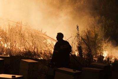 Φωτιές στον Θεολόγο: Ελεύθερος με περιοριστικούς όρους ο 14χρονος που κατηγορείται για εμπρησμούς