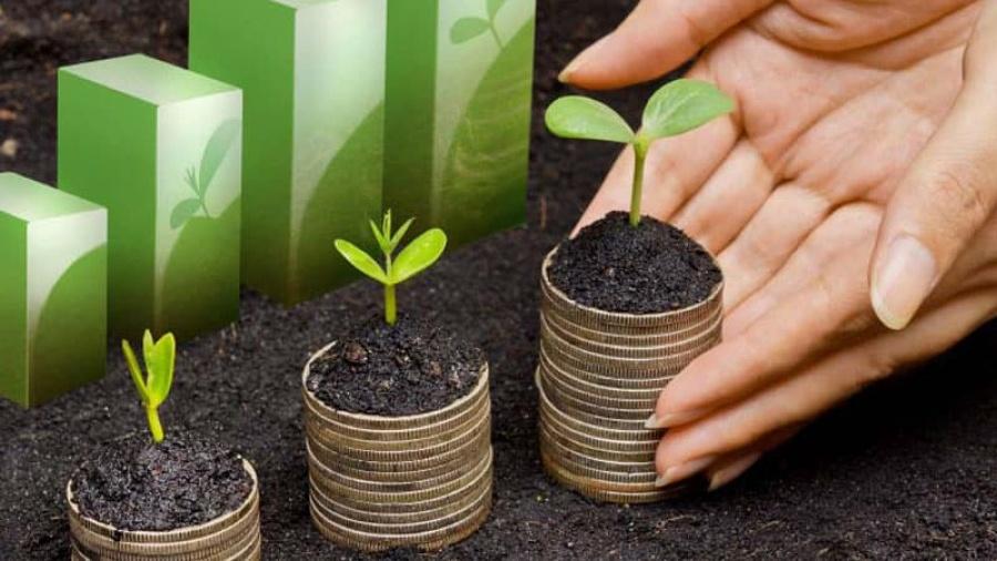 Συμφωνία στην ΕΕ για τους κανόνες των «πράσινων» και βιώσιμων χρηματοπιστωτικών προϊόντων