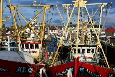Προβλήματα για την αλιευτική βιομηχανία της Σκωτίας, μετά το Brexit