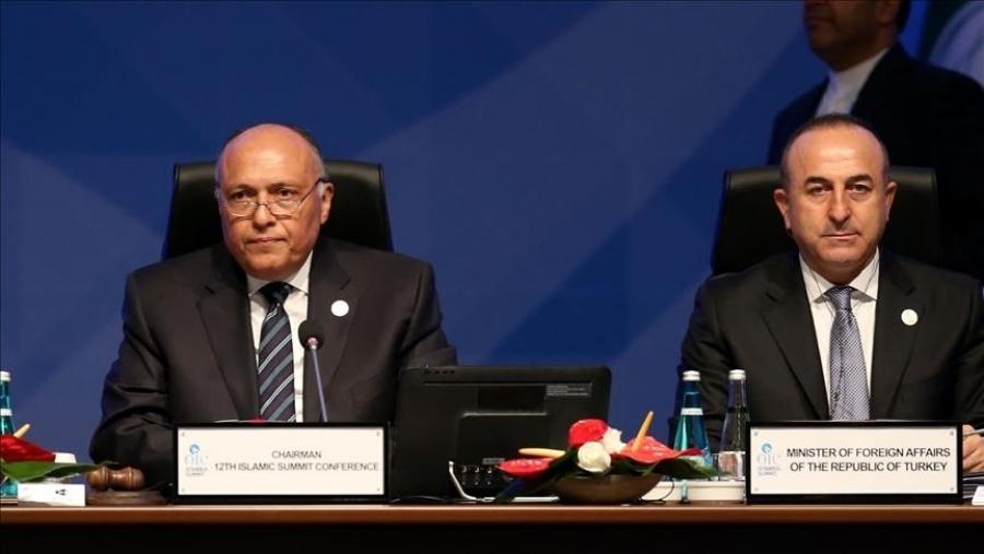 Τι συζήτησε ο Cavusoglu με τον Αιγύπτιο υπουργό Εξωτερικών