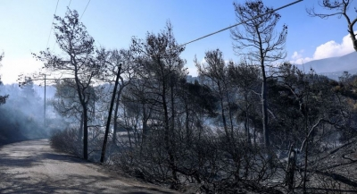 Σε ύφεση η μεγάλη πυρκαγιά στην Κορινθία λόγω εξασθένησης των ανέμων – Εικόνες σοκ από το μέγεθος της καταστροφής