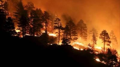 Οι επιστημονικές μελέτες καταρρίπτουν τον μύθο της σύνδεσης κλιματικής αλλαγής με πυρκαγιές – Αιτία η ανεπάρκεια των κυβερνήσεων