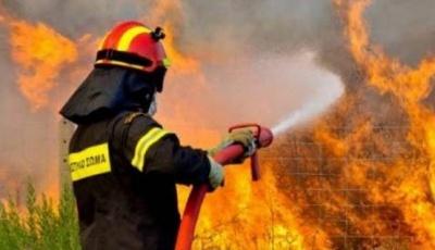 Πυρκαγιά σε αγροτική έκταση στην Περαχώρα Κορινθίας