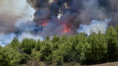 Εκτός ελέγχου η πυρκαγιά στην Ηλεία - Κατευθύνεται προς την Αρχαία Ολυμπία - Αναφορές για εγκλωβισμένους