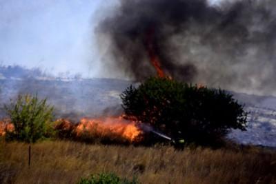 Πυρκαγιά στη Νίκαια Αττικής – Επιχειρούν και εναέρια μέσα