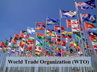 ΠΟΕ: Προβλήματα στην εφοδιαστική αλυσίδα για αρκετό καιρό ακόμα