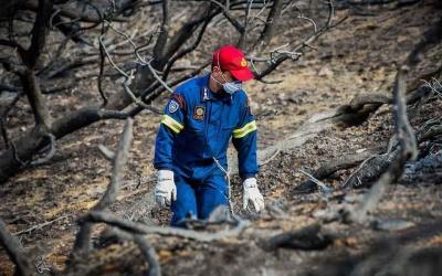 Διεθνής Τύπος: Σφοδρή κριτική στην κυβέρνηση Τσίπρα για τις φονικές πυρκαγιές