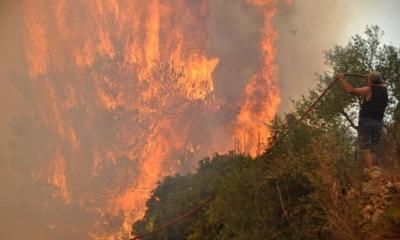 Ζάκυνθος: Υπό πλήρη έλεγχο η πυρκαγιά στην περιοχή Μουζάκι