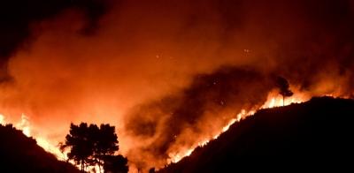 Στην Ελλάδα 120 πυροσβέστες από την Ουκρανία
