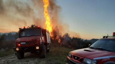 Πυροσβεστική: 55 δασικές πυρκαγιές το τελευταίο 24ωρο σε όλη την Ελλάδα
