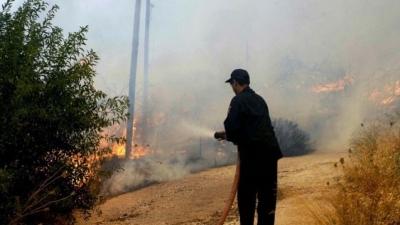 Υπό μερικό έλεγχο η πυρκαγιά στη Βραυρώνα Αττικής