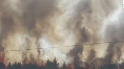 Οι 5 άξονες δράσης για τη στήριξη και την αποκατάσταση των πληγέντων από τις πυρκαγιές