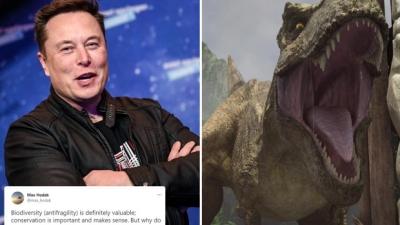 Ο Elon Musk έχει πλέον την τεχνολογία να φτιάξει ένα... αληθινό Jurassic Park, λέει συνέταιρός του
