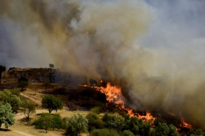 Πόρισμα για τη φωτιά στις Μυκήνες: Την προκάλεσε καλώδιο από ρευματοκλοπή που χρησιμοποιούσαν οι καντίνες