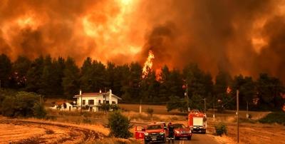 Πύρινος εφιάλτης στην Εύβοια –  Κάηκαν 1000 σπίτια και 350 χιλιάδες στρέμματα δάσους - Πρωτοφανής καταστροφή