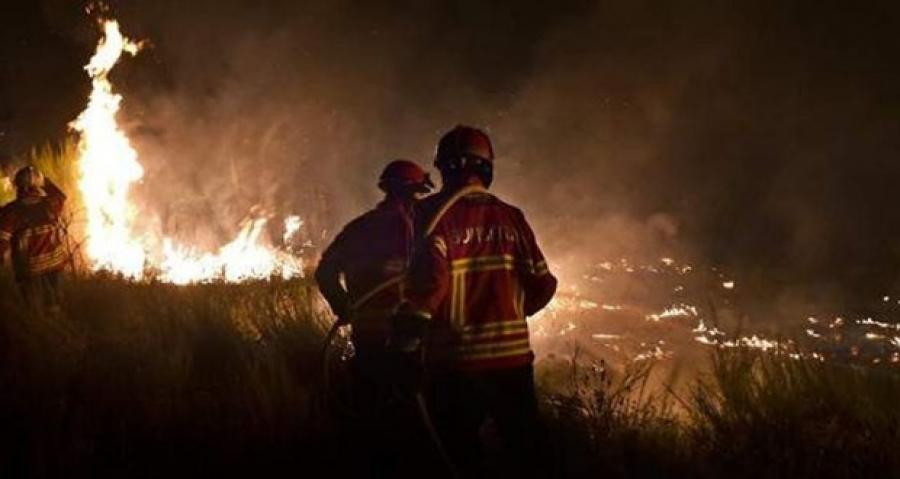 Δύο πυρκαγιές σε δασικές εκτάσεις στην Νέα Μάκρη Αττικής