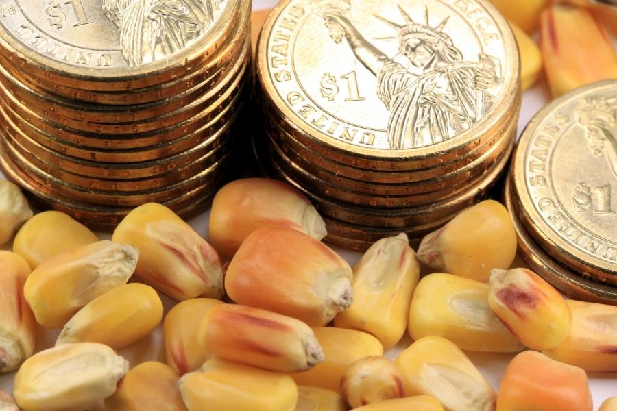 FAO: Αύξηση +31% στις τιμές τροφίμων τον Ιούλιο του 2021 σε σχέση με το 2020