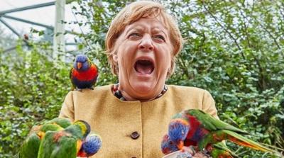 Επίθεση παπαγάλου στη Merkel λίγο πριν ανοίξουν οι κάλπες