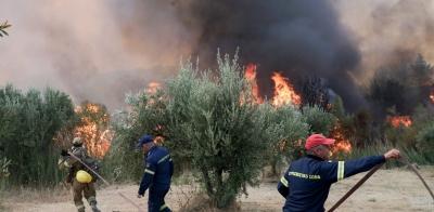 Ηλεία: Συνεχείς αναζωπυρώσεις και τεράστιο πύρινο μέτωπο στη Νεμούτα - Εκκενώσεις περιοχών