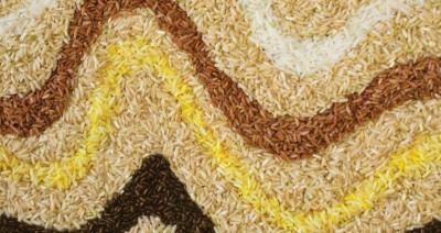 Μετά την πανδημία αναδύεται ο κίνδυνος επισιτιστικής κρίσης – Οι κρίσιμοι δείκτες και οι προειδοποιήσεις για παγκόσμιο υπερ-πληθωρισμό