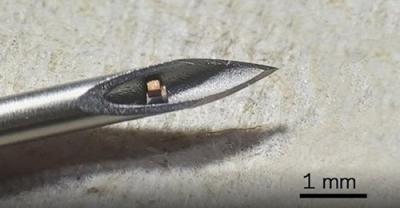 Επιστήμονες δημιούργησαν τσιπ που εισάγεται στο σώμα μέσω ένεσης - Ορατό μόνο με μικροσκόπιο