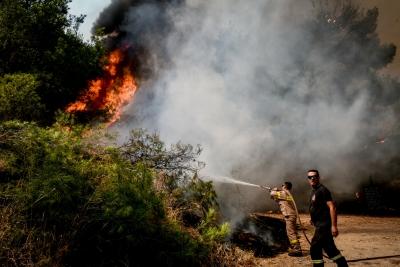 Φωτιά σε δασική έκταση στην περιοχή Αστροβίτσα Αιτωλικού