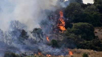 Χαρδαλιάς: 51 πυρκαγιές σε όλη τη χώρα – Καλύτερη εικόνα στον Βαρνάβα, δεν κινδυνεύουν οικίες στην Εύβοια