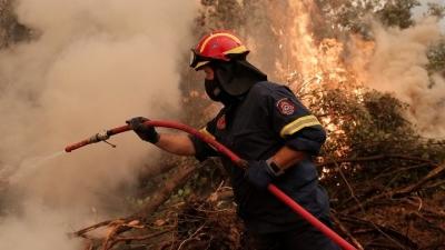 Πυρκαγιά σε δασική έκταση στις Ερυθρές Αττικής