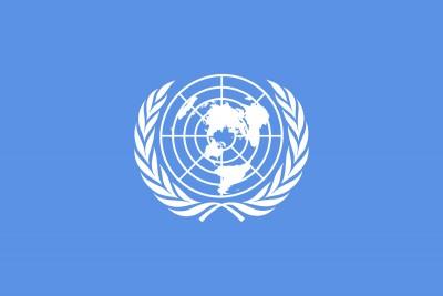 ΟΗΕ: Ομόφωνη έγκριση σε ψήφισμα που καταδικάζει τον συστημικό ρατσισμό – Δεν στοχοποιούνται οι ΗΠΑ