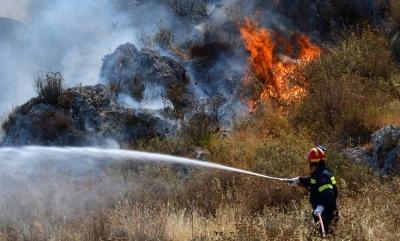 Υπό έλεγχο η φωτιά στην Κέρκυρα - Εκκενώθηκαν δύο χωριά - Συναγερμός στις αρχές