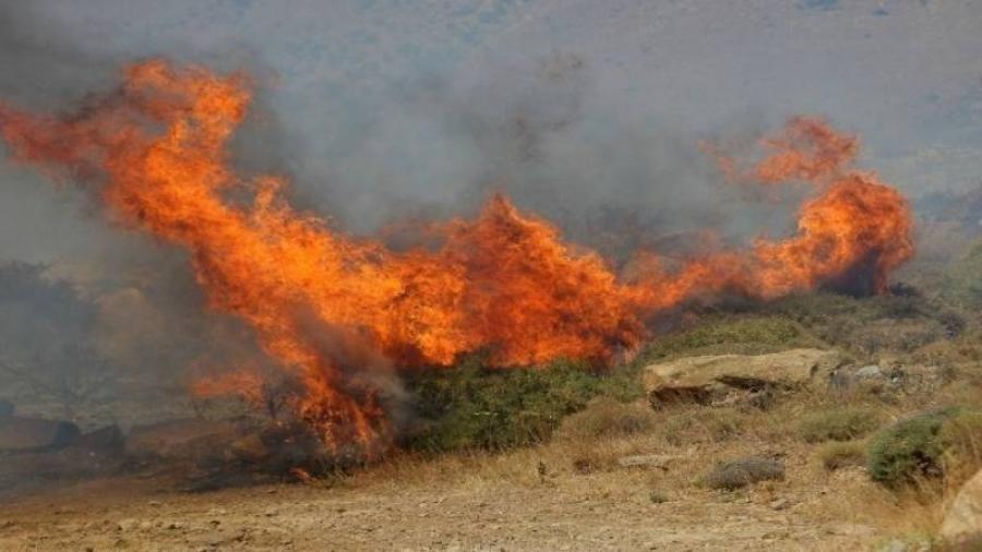 Πυρκαγιά σε δασική έκταση στη Νέα Πέραμο Αττικής