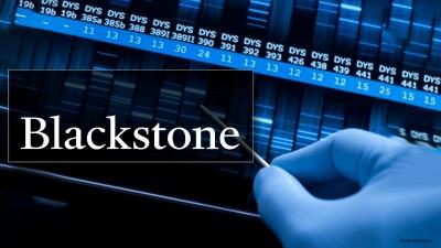 Οι 13 εκπλήξεις της Blackstone για το 2021 – Ο Trump παρουσιαστής, η Wall -20%, πωλείται η Tesla