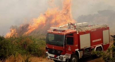 Οριοθετημένη η φωτιά στην Καστοριά – Χωρίς ενεργό μέτωπο η Κέρκυρα
