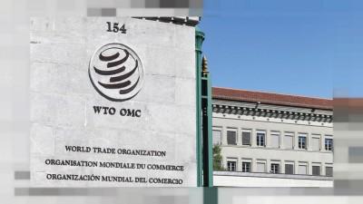 ΗΠΑ: Δεν στηρίζουν την Νιγηριανή Ngozi Okonjo-Iweala για την ηγεσία του ΠΟΕ