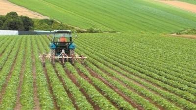 Στα Χανιά η πρώτη Μεσογειακή, Πράσινη βιοκλιματική περιφερειακή Τράπεζα Σπόρων