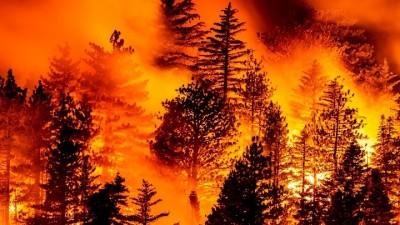 Μεγάλη πυρκαγιά σε θαμνώδη έκταση στην Καλιφόρνια, απομακρύνθηκαν 60.000 κάτοικοι