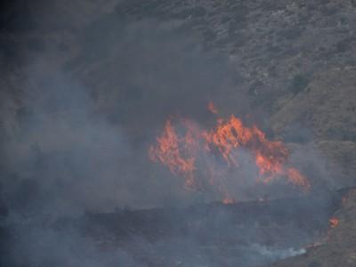 Υπό μερικό έλεγχο η πυρκαγιά σε δασική έκταση στη Βόλβη Θεσσαλονίκης